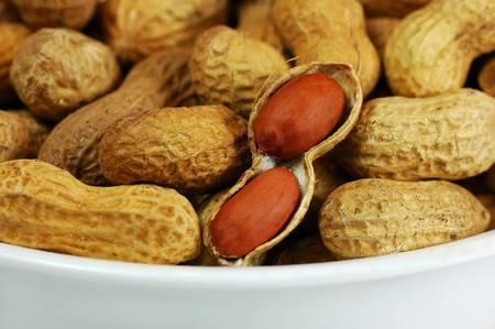 Des bactéries pourraient être utilisées contre l'allergie aux cacahuètes