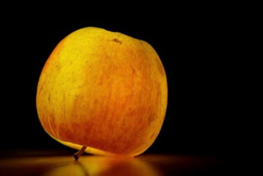 Pourquoi une pomme des années1950 équivaut à 100pommes d'aujourd'hui