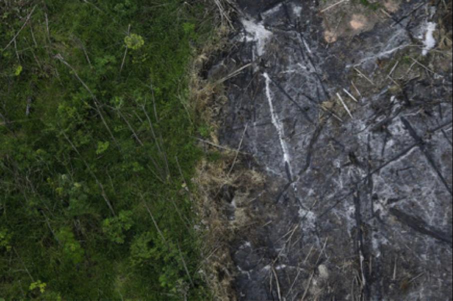 Destruction de la planète : le quatrième seuil (sur neuf) est franchi