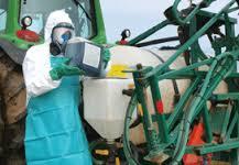 """Cinq pesticides cancérogènes """"probables"""" (OMS)"""