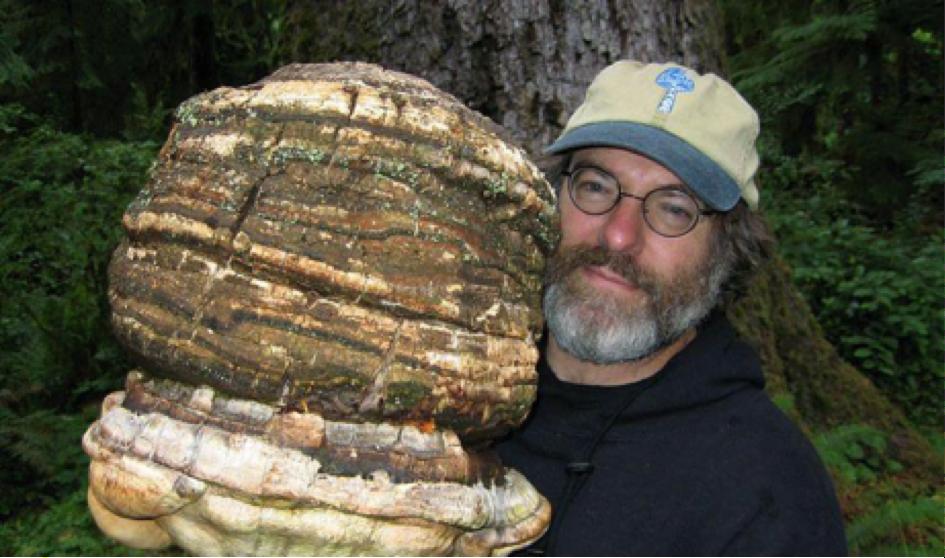 Un champignon tueur d'insectes, le brevet qui dérange Monsanto