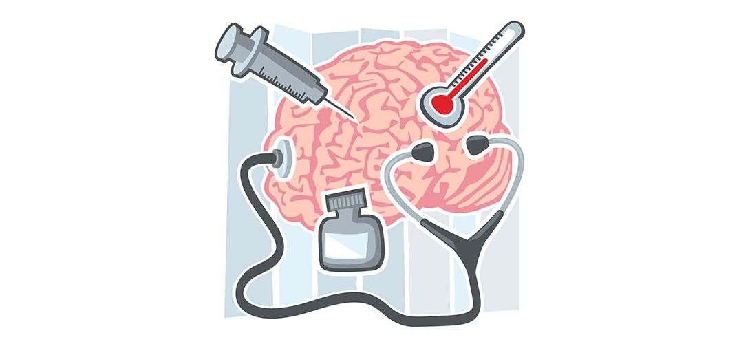 Le cerveau et le système immunitaire sont connectés