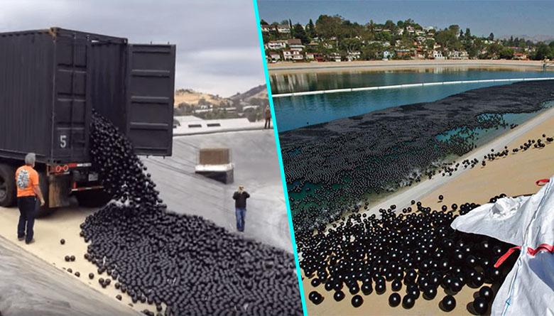 La Californie contrainte de jeter des balles de plastique dans ses lacs
