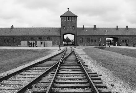Le traumatisme des camps de concentration se transmet-il aux enfants?