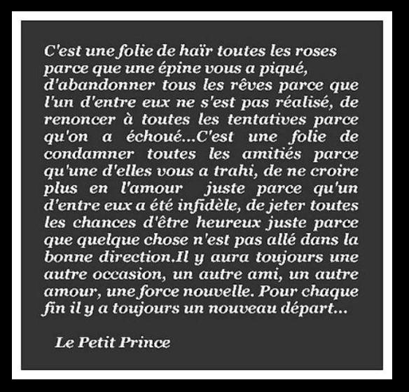 Saint Exupéry - Le Petit Prince