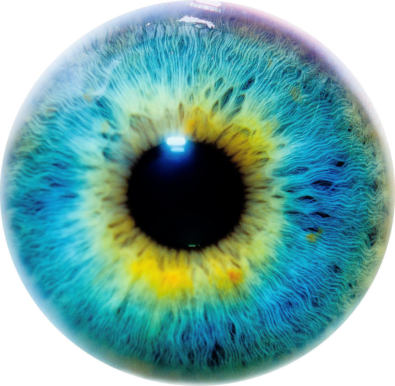 Psychose : l'étonnante performance du cerveau sujet aux hallucinations
