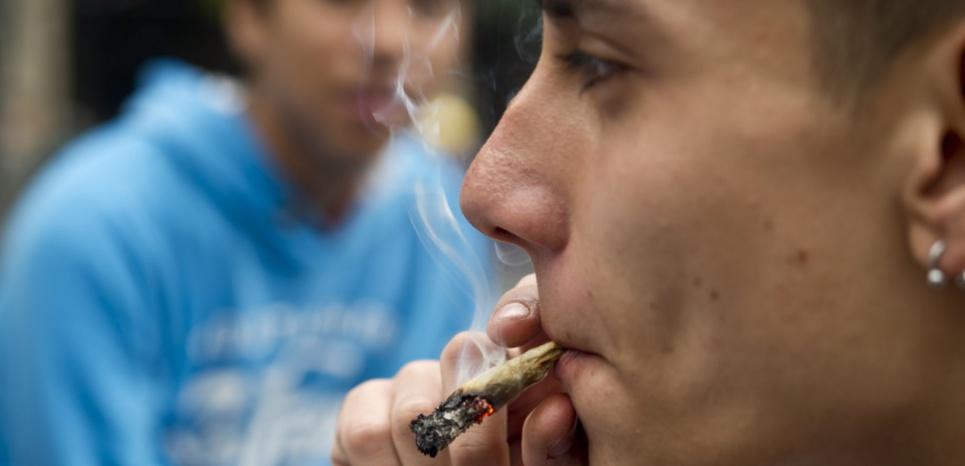 Le cannabis serait un substitut affectif