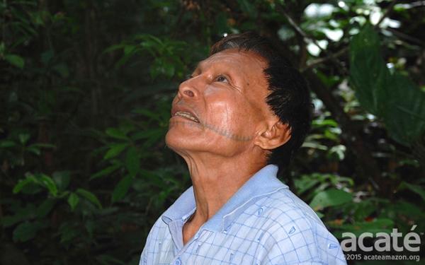 Une encyclopédie de 500 pages sur la médecine traditionnelle prend forme grâce à une tribu de l'Amazonie