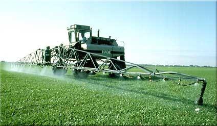 Dicamba : l'herbicide de l'apocalypse