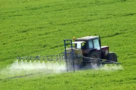 Puberté précoce : nos enfants sont touchés par les perturbateurs endocriniens et les pesticides.