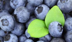 Aliments anti-inflammatoires recommandés en cas de Polyarthrite rhumatoïde