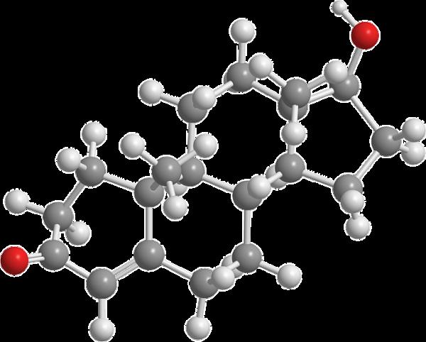 La testostérone : une piste de traitement contre la sclérose en plaques