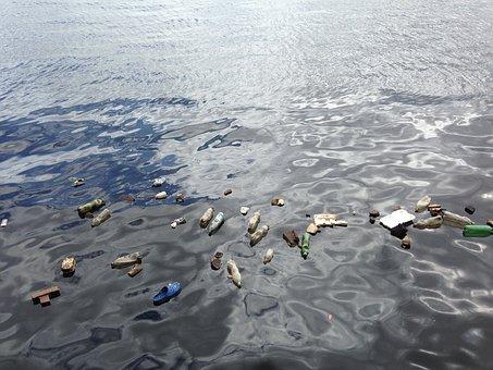 Le système microbien vient de créer spontanément une bactérie capable de digérer les plastiques