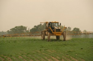 f13e7e9bbf_Pesticides_Rogator_Spraying_Corn