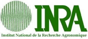 inra_logo_v_1