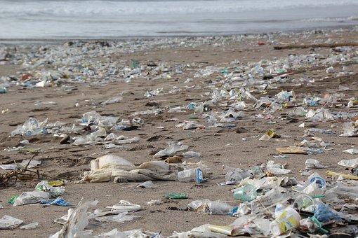 Les sacs plastiques : calamité mondiale