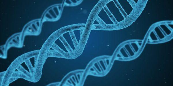 Record de prix battu pour un médicament pour une maladie génétique rare