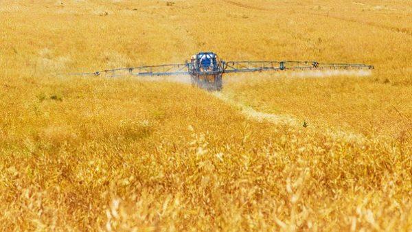 Six résidus de pesticides sur dix retrouvés dans l'alimentation