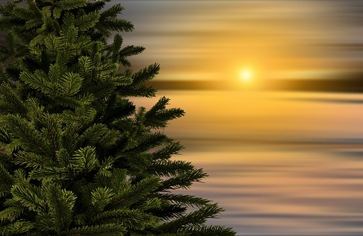 Le solstice d'hiver aux origines de Noël