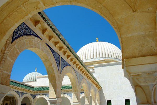 L'exemple de la Tunisie au 19° siècle