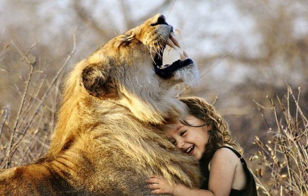 """Frans de Waal : """"Nos émotions et celles des animaux ont une base biologique commune"""""""