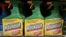 45 personnes portent plainte après la détection de glyphosate dans leur urine