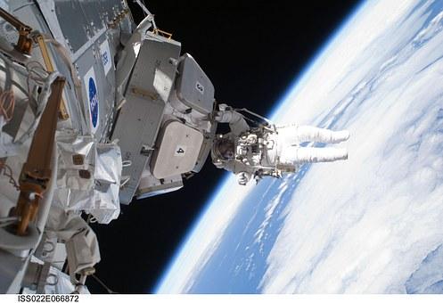 Les microbes comme régulateurs des conquêtes spatiales