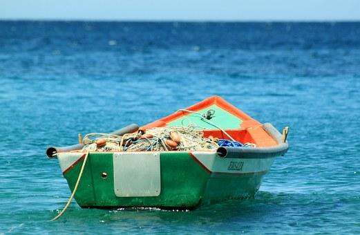 Pêche : de plus en plus de bateaux et de moins en moins de poissons dans les océans