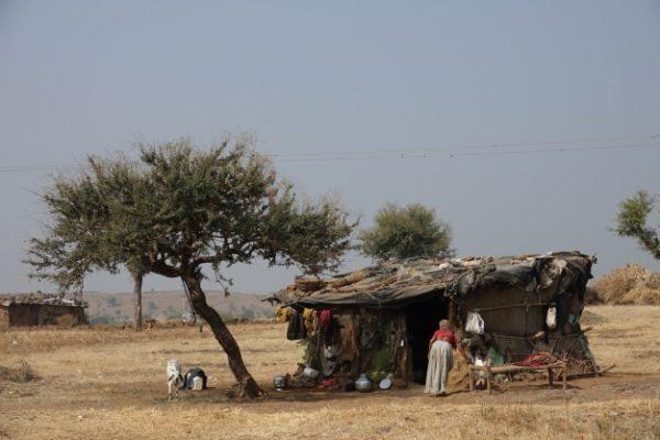 Afrique : la catastrophe annoncée n'a pas eu lieu