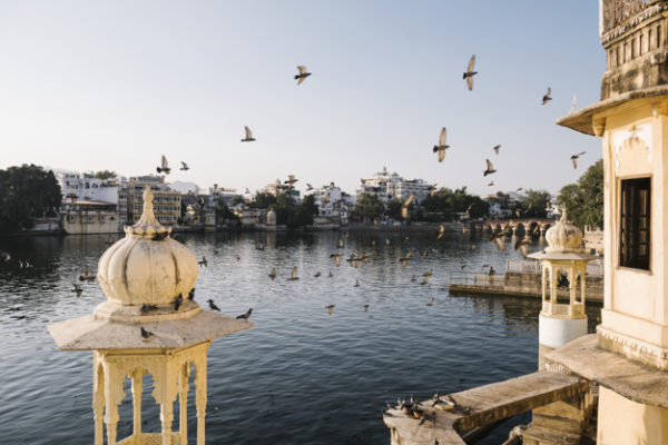 La mystification du Covid19 en Inde: les faits réels