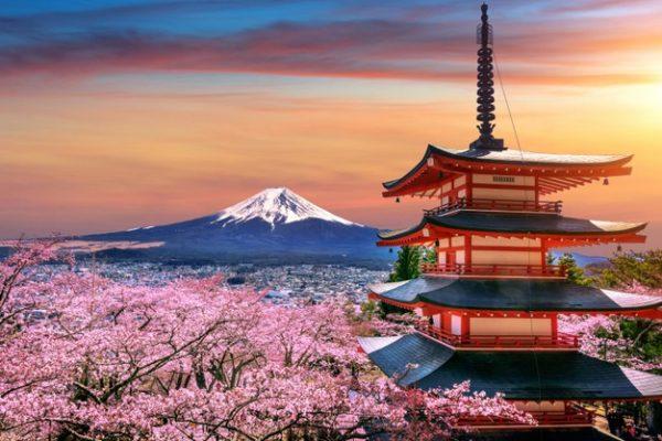 Pas de vaccination au JAPON et en Asie